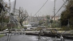 Electricity poles and lines lay toppled on the road after Hurricane Maria hit the eastern region of the island, in Humacao, Puerto Rico on Wednesday, Sept. 20, 2017. (AP / Carlos Giusti)
