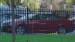 CTV News Channel: Child dies in parked car