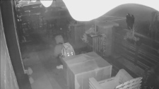 Caught on cam: Break-in at Barrie restaurant