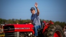 Justin Trudeau drives a tractor at the International Plowing Match and Rural Expo in Walton, Ont., on Friday, September 22, 2017. THE CANADIAN PRESS/Chris Donovan