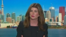 Rona Ambrose, a member of Canada's NAFTA Advisory Council on CTV's Question Period.