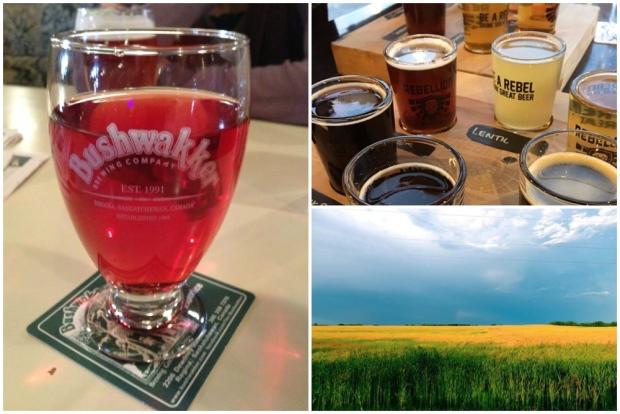 Regina among best beer towns