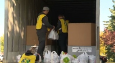 Volunteers loading up trucks with food collected on Saturday, September 23, 2017.