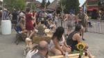 CTV Barrie: Oktoberfest