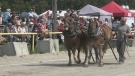CTV Barrie: Coldwater fair