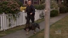 Police dogs manitoba shooting