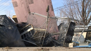 City looking at solution to illegal dumping. (Angelo Aversa / CTV Windsor)