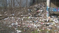 Windsor council may have plan to deal with illegal dumping