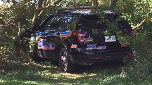 A Wingham Police van was stolen, driven to Listowel and crashed into a tree. (Terry Kelly / CTV Kitchener)