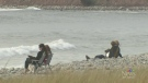 Maritimers are reveling in the unseasonably high temperatures in the region.