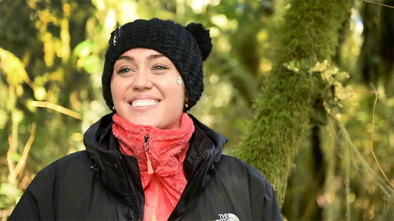 Miley Cyrus last joined conservation group Pacific Wild in 2015 to oppose the B.C. government's controversial wolf cull. (Pacific Wild)