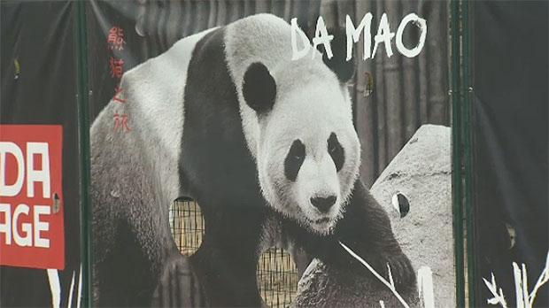 Panda passage