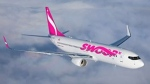 WestJet's new discount airline, Swoop, is scheduled to launch in June 2018. (WestJet)