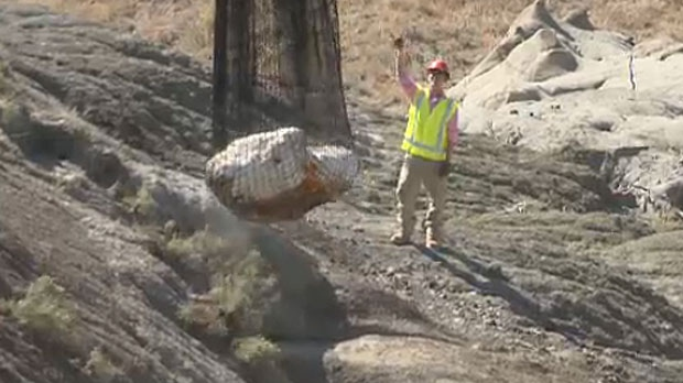 A 2,000 pound fossilized dinosaur skull was removed from a steep hill near Medicine Hat through the use of a helicopter.