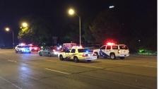 fatal, pedestrian, struck