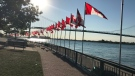 A tribute of 128 flags are flying at Assumption Park in Windsor, Ont., on Thursday, Oct. 5, 2017. (Angelo Aversa / CTV Windsor)