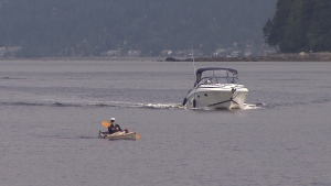 Stanley Park Kayak