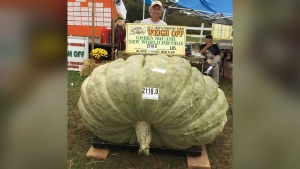 In this Oct. 7, 2017, photo provided by Susan Jutras, Joe Jutras stands with his world record breaking, 2,118-pound squash, following a weigh-in at Frerichs Farm in Warren, R.I. (Susan Jutras via AP)