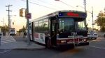 A TTC bus involved in a collision in Scarborough is shown.