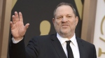 Harvey Weinstein arrives at the Oscars in Los Angeles, on March 2, 2014. (Jordan Strauss / Invision / AP)