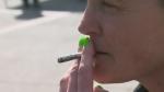 Sask. gov't planning for pot legalization