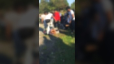 Suspensions after disturbing attack on Montreal st
