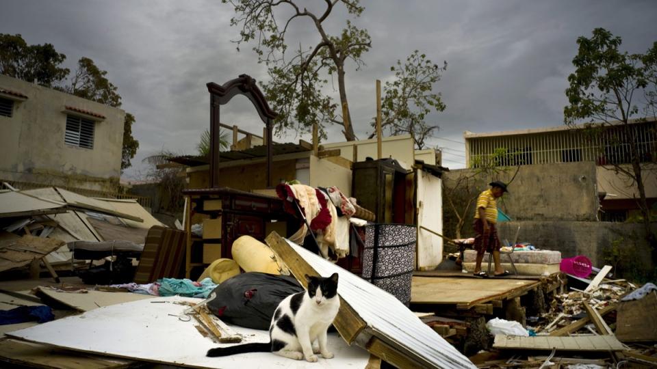 Damage from Hurricane Maria, in San Juan, Puerto Rico, on Oct. 9, 2017. (Ramon Espinosa / AP)