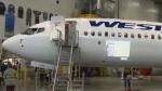 WestJet unveils newest airplane