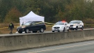 Mounties were called to assist paramedics for a report of a man who had stabbed himself inside of a vehicle on the Inland Island Highway. A struggle ensued and the man was later shot and died from his injuries. Oct. 12, 2017. (CTV Vancouver Island)