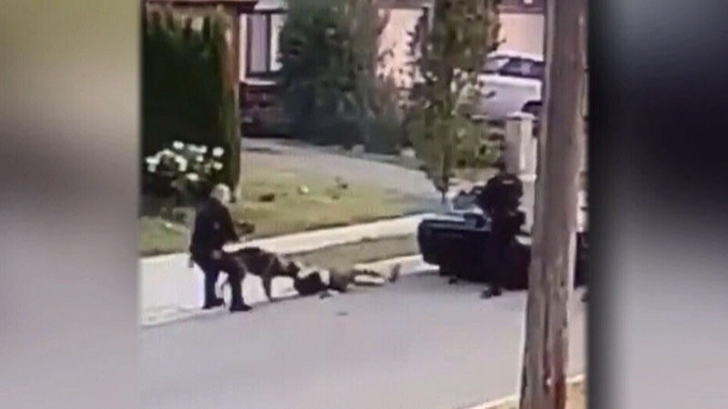 Video of a dramatic takedown was uploaded to social media. (Facebook)