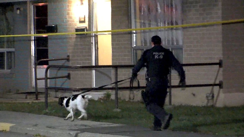 Police are investigating after shots were fired at a group of people in the east-end on October 13, 2017.