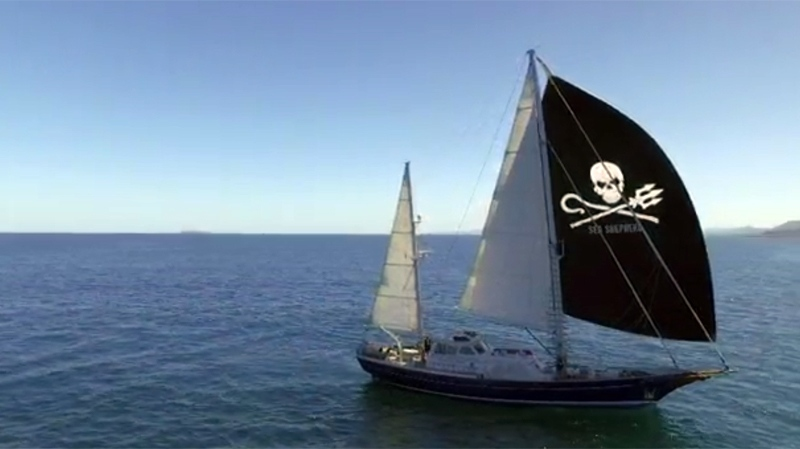 The Sea Shepherd Conservation Society and biologist Alexandra Morton argue the fish farms are raising sick fish. The society's 81-foot research vessel Martin Sheen sails up the B.C. coast to support Morton. (W5)