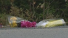 A roadside shrine made up of flowers placed by Coffrey's parents now marks the spot where the two teens careened off Rochester Drive in Hammonds Plains.