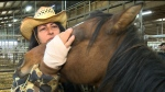 Rhonda Snow pets one of her Ojibwa ponies. (CTV Winnipeg)