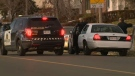 Police are searching for a number of suspects in connection with a shootout on a Calgary street on Sunday.