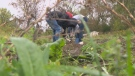 Kids learn about farming and social responsibility