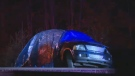 A man has died following a crash on Nova Scotia's Highway 102 Monday night.