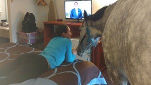 Lindsey Partridge and her horse Blizz are shown in a Super 8 hotel room in Georgetown, Ky. in a handout photo. (THE CANADIAN PRESS/HO-Lindsey Partridge)