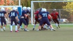 Concussions a concern in youth sports