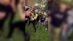 Up to eight students are suspended following an ugly brawl involving a number of St. Pius X  High School students on Monday, October 16th, 2017.