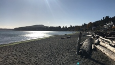 A break between storm systems at Cordova Bay Beach. Tues., Oct. 17, 2017. (Astrid Braunschmidt/CTV Vancouver Island)