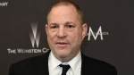 In this Jan. 8, 2017 file photo, Harvey Weinstein arrives at The Weinstein Company and Netflix Golden Globes afterparty in Beverly Hills, Calif. The Weinstein Co.'s board said in a statement Tuesday that Weinstein had resigned.  (Photo by Chris Pizzello/Invision/AP, File)