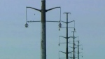 'Power line to nowhere' may get completed