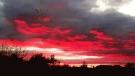 Fiery hues in Gimli. Photo by Gary Patterson.