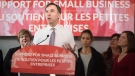 Minister of Finance Bill Morneau speaks to local business owners and media during a press conference at Station 33 Cafe & Yoga in Hampton, N.B., on Wednesday, October 18, 2017. (THE CANADIAN PRESS/Stephen MacGillivray)