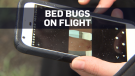 Woman claims there were bed bugs on flight