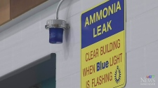 8 Vancouver rinks use ammonia-based refrigeration