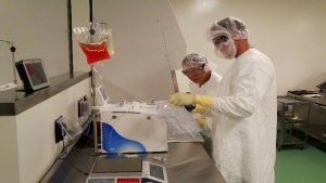 In this May 2016 file photo provided by Kite Pharma, cell therapy specialists at the company's manufacturing facility in El Segundo, Calif., prepare blood cells from a patient to be engineered in the lab to fight cancer. (Kite Pharma via AP, File)