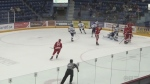 soo greyhounds vs wolves