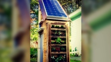 CTV News Channel: Solar phone-charging station